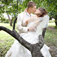 Свадьба Дмитрия и Елены - 28