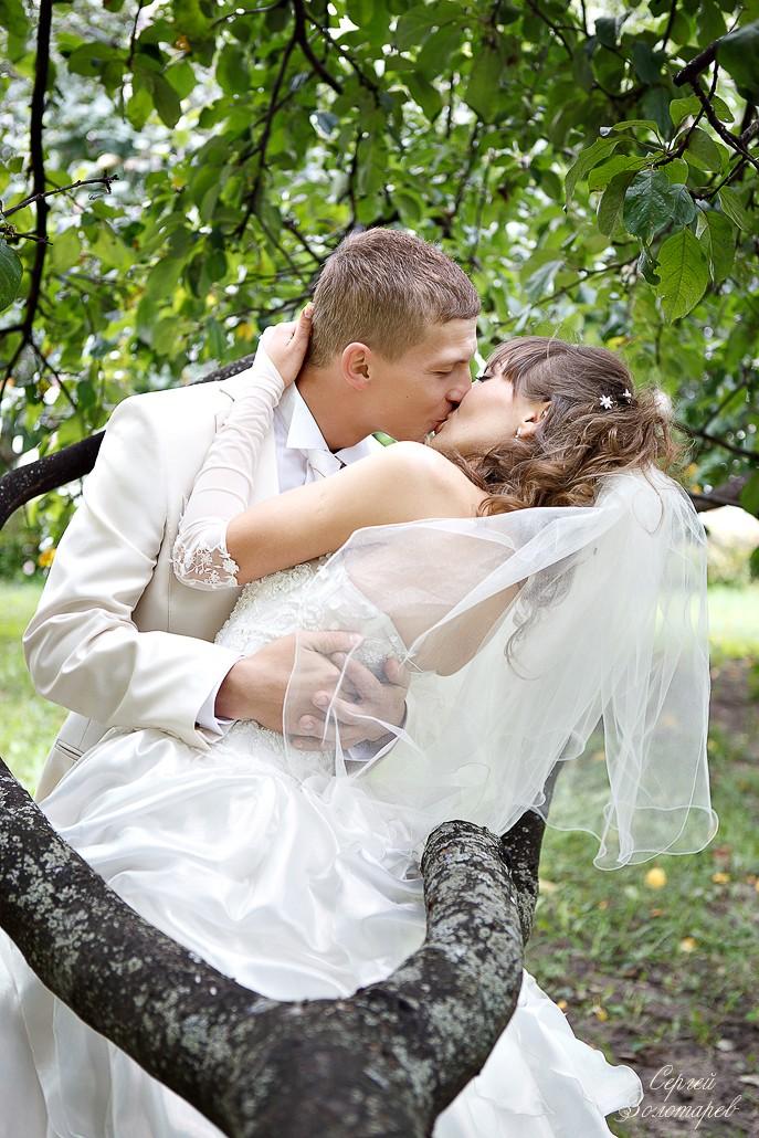 Свадьба Дмитрия и Елены - 27