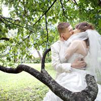Свадьба Дмитрия и Елены - 26