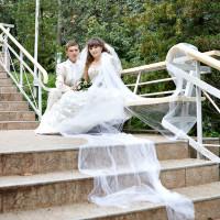 Свадьба Дмитрия и Елены - 24