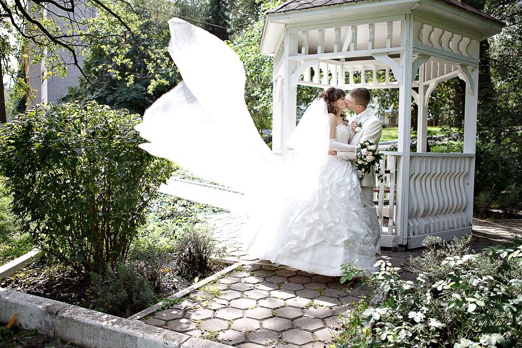 Свадьба Дмитрия и Елены - 20