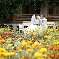 Свадьба Дмитрия и Елены - 5